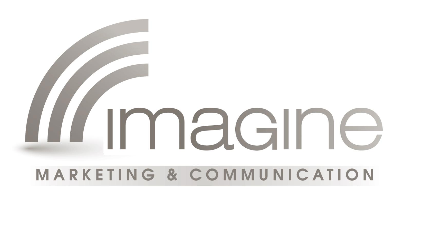 Logo_IMAGINE-gris